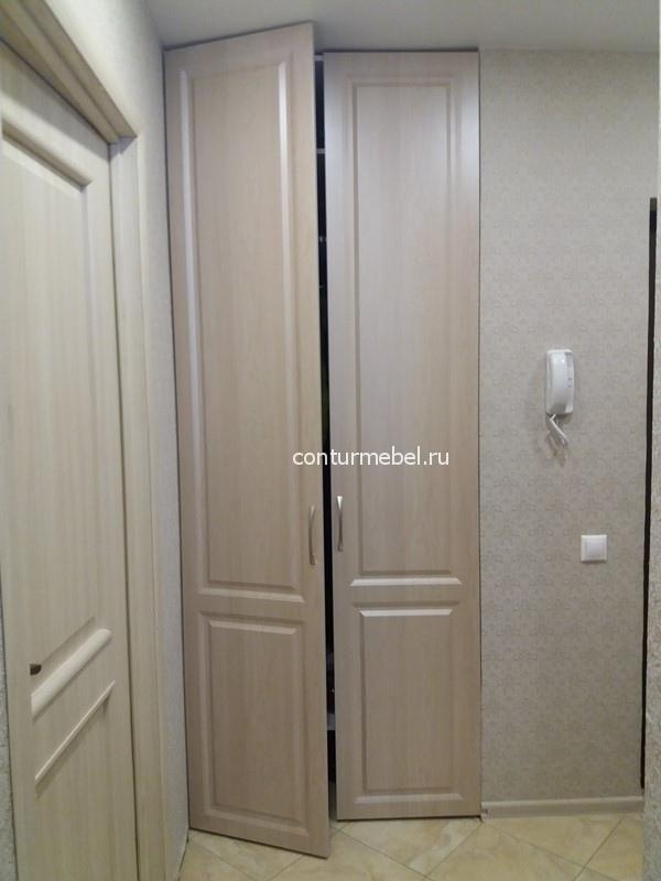 Цвет дверей и ее рисунок выбранные заказчиком